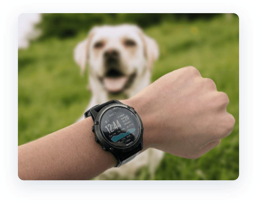 Photo of Garmin watch with a dog